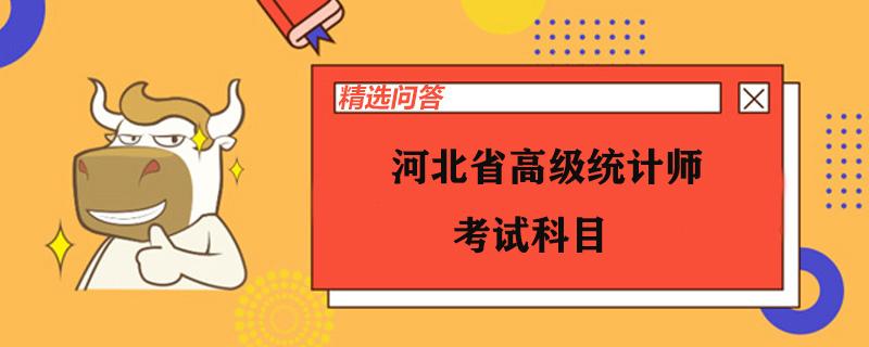 河北省高级统计师考试科目